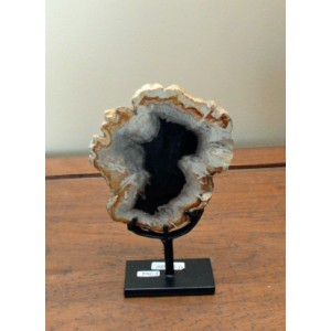 Petrified Wood Decor – 7